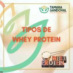 Tipos de whey protein 01