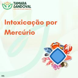 Intoxicação por mercúrio