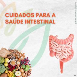 Cuidados para a saúde intestinal