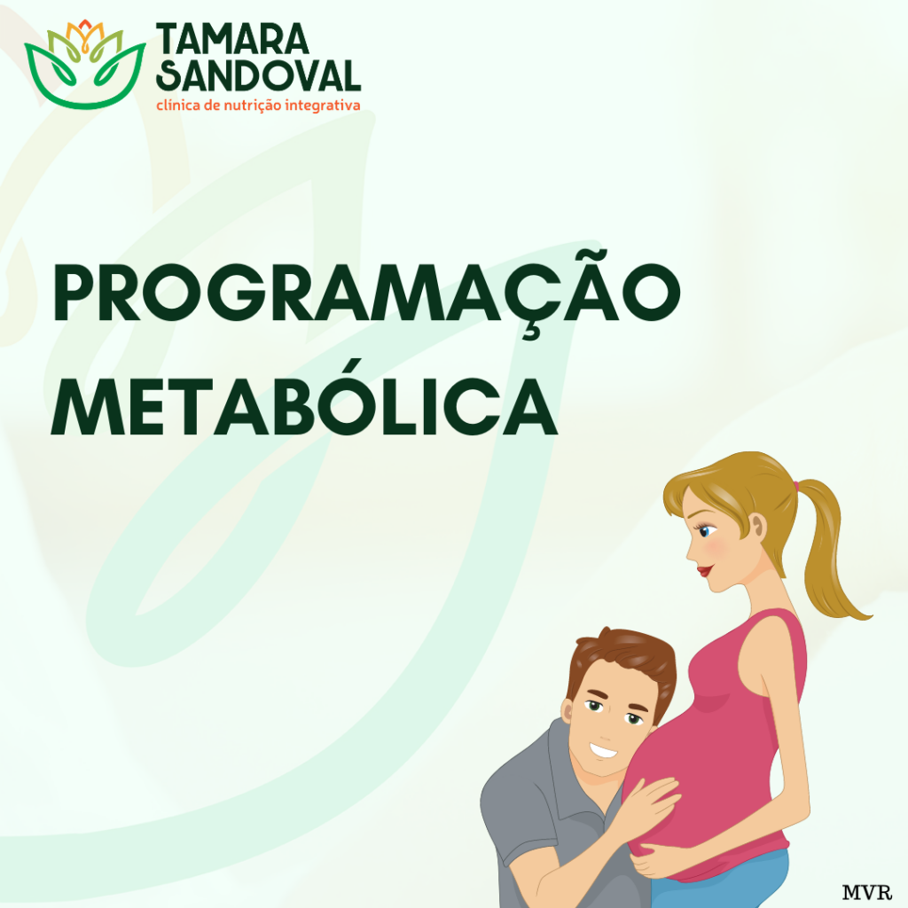 Programação metabólica